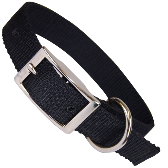 """Picture of 1"""" Wide Dog Collar"""