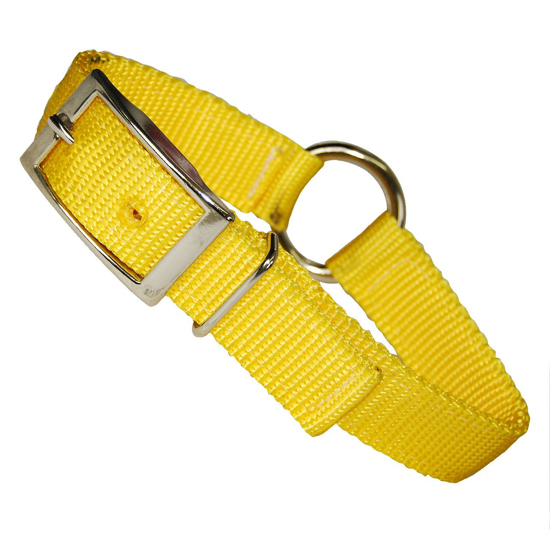 """Picture of 1"""" Wide Dog Collar with Ring"""