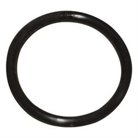 Picture of O-Ring f/ Waikato Meter