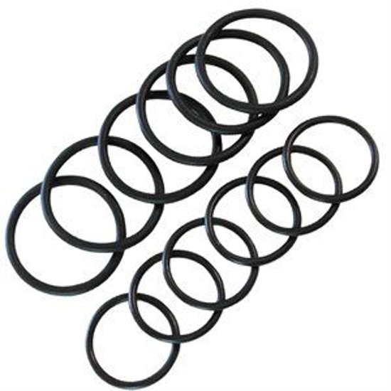 Picture of Ambic Milk Sampler O-Ring Pack--12 O-Rings