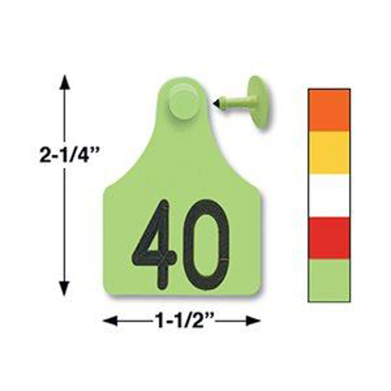Picture of Allflex Large Tamperproof Eartag 25 tags