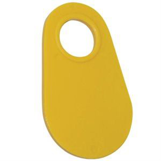 Picture of Coburn Neck Tag Blank